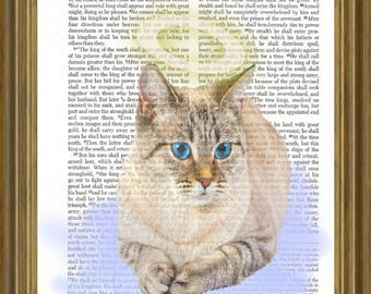 Angelic Cat on Bible Page