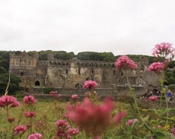Saint David's bishop palice ruins