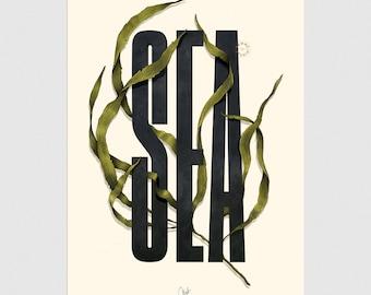 Typo poster // Sea typo illustration // Handmade poster