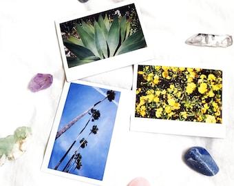 POLAROID Bundle Deal - 3 Unique Polaroids