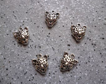 5 pretty charms metal Tigers silver 10 x 13 mm
