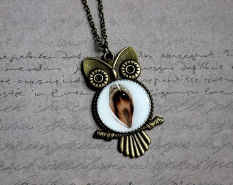Necklace + pendant OWL metal, resin and feather