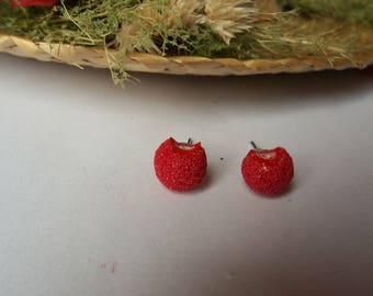 Studs/posts gourmet Strawberry candy Fimo