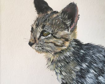 Kitten painting,Sassy,kitten, cute kitten, kitten painting,cats,kitty kat,original painting, furry kitten, children's room,BWBramblettArt