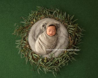 newborn Digital Backdrop boy girl Background wreath nest  Newborn Photography koala prop download overlay Eucalyptus High Res jpg file-#5