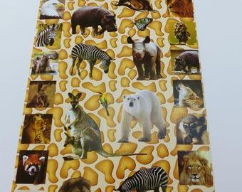 34 stickers animal wildlife elephant seal kangaroos wild Zebra lion Tiger panda bear
