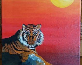 Tiger behind a rock at sunset