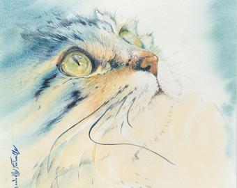 Watercolor cat 16 X 16 cm