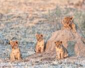 Waiting for Mum