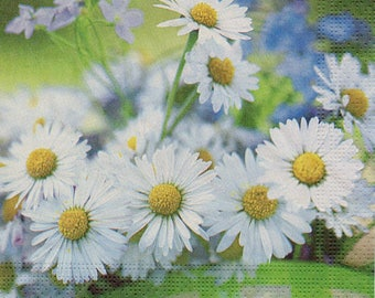 103 the daisies towel lunch size paper