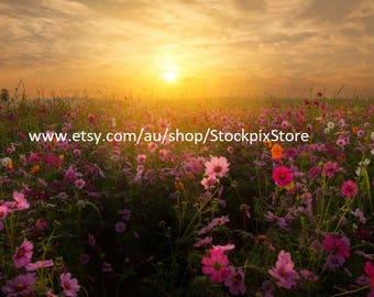 digital image sunset HD