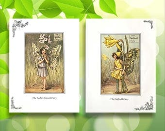 Daffodil and Lady's-Smock Flower Fairy Print from vintage book. Woodland Fairies Nursery themed gift for girl. Illustration for framing