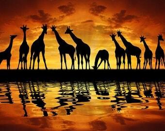 ORIGINAL design, WASHABLE and durable TABLE SET - African landscape, dusk giraffes - classic.