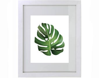 Green Monstera Leaf Print