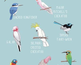 Australian Birds: Colourful laser OR giclée print A4 size - customisable
