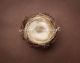 Bird's Nest Digital Backdrop for Newborn Photography