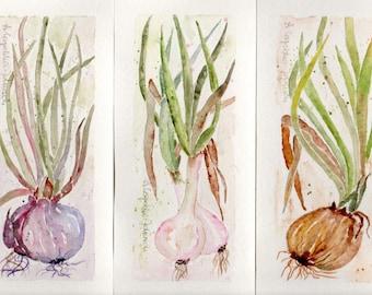 Green Onion triptych, 3 original watercolor paintings, rustic accent decor, modern farmhouse art, botanical decor, herbal art