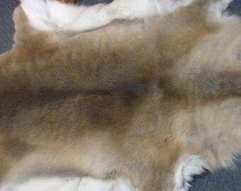 caribou hide