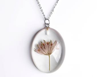 Resin pendant with flower-necklace with true flower of Astrantia.