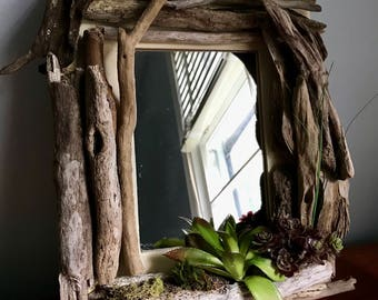 Driftwood and Succulent Mirror
