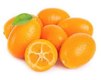 Fresh Kumquat ( 5 Lbs)