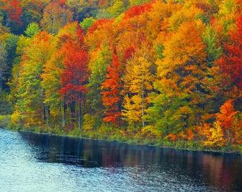 WNY Fall 1