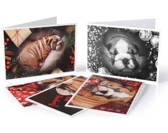 Set of 5 Limited Edition Bulldog Christmas Cards