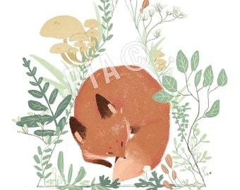 Sleepy Fox • PRINT A5