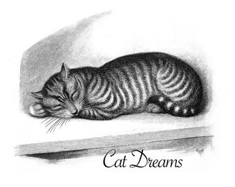 Cat Dreams Print