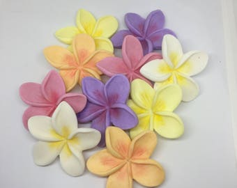 12 edible tropical frangipani flowers cupcake toppers mixed colours