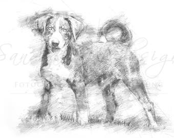 Digital download for your own prints-motif Appenzeller in sketch style
