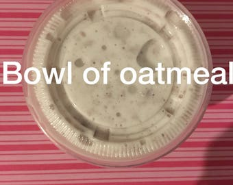 Bowl Of Oatmeal Slime