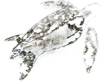 Digital Painting/Abstract Painting/Animal/Sea Turtle/Digital Print/Instant digital download