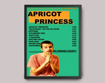 Rex Orange County Apricot Princess Custom Music Poster // A3 Album Art // Wall Art Poster Design