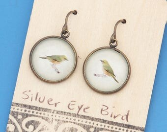 New Zealand Waxeye, Silvereye birds, vintage art print, Earrings, glass dome art, niobium hypo-allergenic