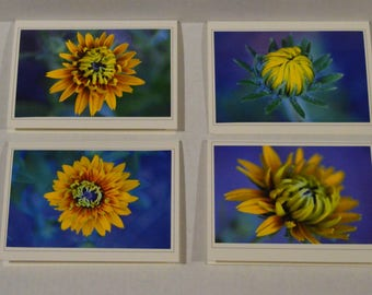 4 Fine Art Black-eyed Susan Photo Greeting Cards, Black-Eyed Susan Photo Notecard Set, Flower Notecard Set