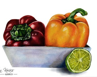 Paprika - Original coloured pencil Ddrawing