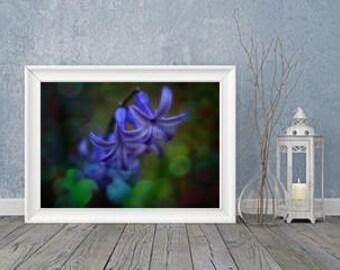Fine art photography digital Print Psychedelic  Purple Power flower
