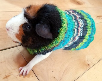 Guinea Pig Sweater - Made To Order!