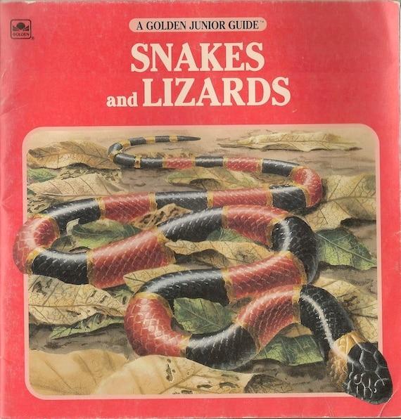 Snakes and Lizards A Golden Junior Guide - George S Fichter - David Mooney - 1993 - Vintage Kids Book