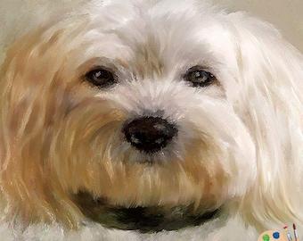 Custom Pet Portraits , Dog Portraits, Pet Oil Portraits on Canvas or as Canvas Prints