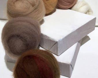 "KIT SALE roving set, Felting wool kit,  ""The Neutral Zone"", ecru tan sand brown beige  stone red brown, earth skin tones, wool roving kit, w"