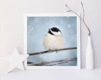 Chickadee Print, Winter Decor, Nature Photography, Bird Art Print, Large Wall Art, Livingroom Decor, Nursery Art, Nature Inspired Gift