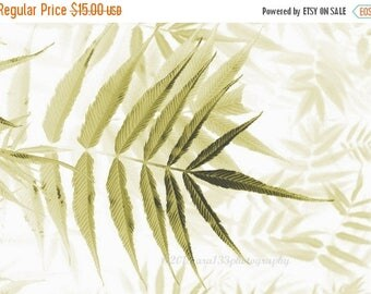 50% OFF SALE Botanical Art Print, Home Decor, Cottage Decor, Nature Photography, Leaf Pattern, Neutral Wall Art - 5x7 inch Print - In Dreams