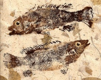 GYOTAKU fish Rubbing Pisces fish 8 X 10 quality Art Print Cottage Decor by artist Barry Singer