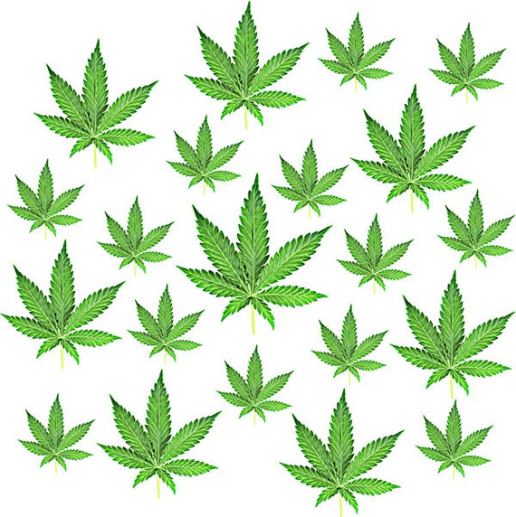 Cannabis Marijuana pattern background leaf clip art png clipart pot leaf color Digital graphics Download plants Image art printables