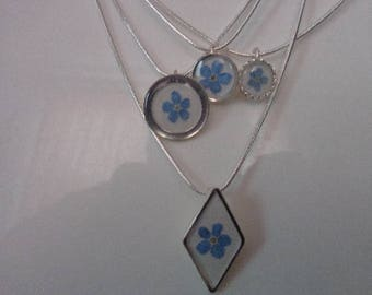 REAL Forget-me-not Necklace With a Sterling Silver Snake Chain