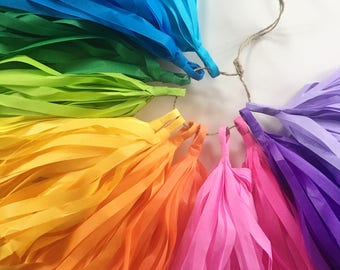 RAINBOW FUN tassel garland / tissue paper rainbow decorations purim carnival circus party decor lgbtq wedding first birthday cake smash