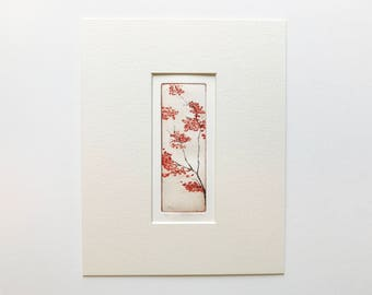 original color etching and aquatint of cherry blossom - sakura