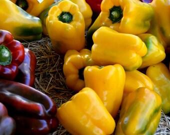 Canary Bell Pepper Seeds, Bell Pepper Seeds, Sweet Pepper Seeds, Yellow Bell Pepper Seeds, Organic Pepper Seeds, Yellow Pepper Seeds
